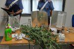 Floridia, coltiva canapa in casa con allaccio abusivo alla rete elettrica: arrestato