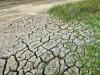 I gas serra aumentano il rischio di siccità record in Europa (fonte Pixabay)