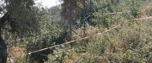 II traliccio dell'alta tensione in località Sorba di Caronia sotto il quale è stato rinvenuto il corpo di Viviana Parisi