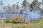 Boschi in fiamme in provincia di Enna, altri focolai in contrada Furma