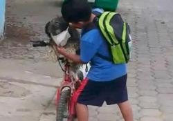 Il video dolcissimo: ecco come il piccolo Antony vuole proteggere il suo cagnolino dal virus Il bimbo ecuadoriano mette la mascherina al suo cane prima di fare un giro in bicicletta - CorriereTV