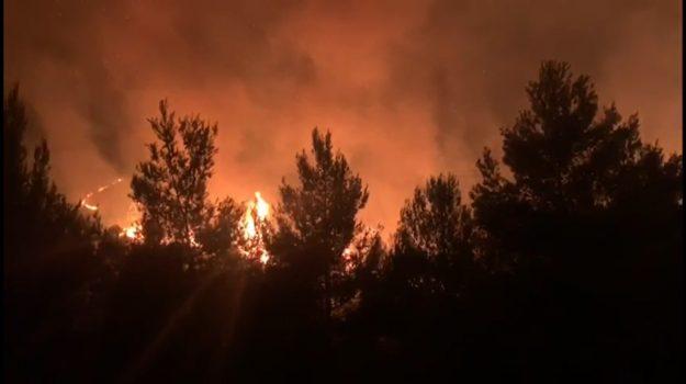 caldo, incendi, Palermo, Meteo