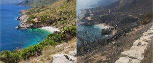 Riserva dello Zingaro, l'impressionante foto di una Cala prima e dopo l'incendio