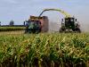 Agricoltura: fondo garanzia sfiora 400 milioni di finanziamenti