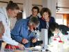 Gruppo di citizen scientist al lavoro (fonte: Anne Le Gars/ Wikipedia)