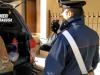 Armi e droga in un'azienda agricola del Vittoriese: pena patteggiata a 3 anni