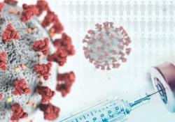 Covid, come avviene l'infezione? E chi vince la sfida del vaccino? La videoscheda In che modo il virus entra nelle nostre cellule e le diverse fasi della risposta immunitaria. Candidati vaccini più promettenti: 38 in stadio clinico, ma solo 9 sono giunti alla fase conclusiva - CorriereTV