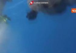 Guardia Costiera libera in mare  26 piccoli di tartaruga marina Il video dell'operazione della Guardia Costiera di Terracina  - CorriereTV