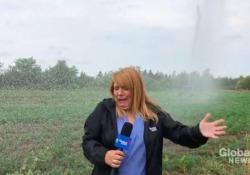 Il divertente video di una reporter sorpresa dal getto dell'irrigatore Una doccia inaspettata mentre dà le notizie - CorriereTV