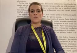 Licia Troisi presenta «Strix»: «Ripago il mio debito con i manga» La scrittrice fantasy presenta il suo nuovo progetto multimediale  - Corriere Tv