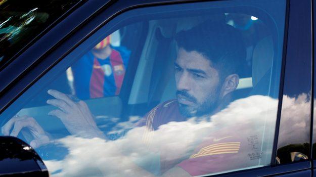 truffa, Luis Suarez, Sicilia, Calcio