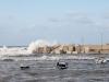 Porto di Bonagia, le mareggiate affondano alcune barche