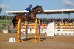 Fiera mediterranea del cavallo, da domani a domenica sport e spettacolo ad Ambelia