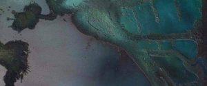 """""""Abyssus"""", alla Galleria Arte Cavour di Messina la mostra personale di Delia Meduri"""