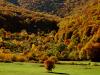 Le più belle passeggiate autunnali nel foliage