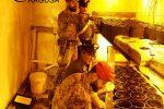 Piantagione di droga in un bunker a Comiso, un arresto