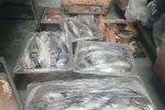 Pesce non tracciato in un ristorante a Belpasso: sequestro e multa