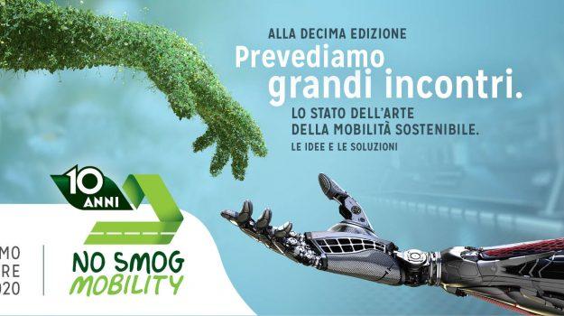 ambiente, Palermo, Società
