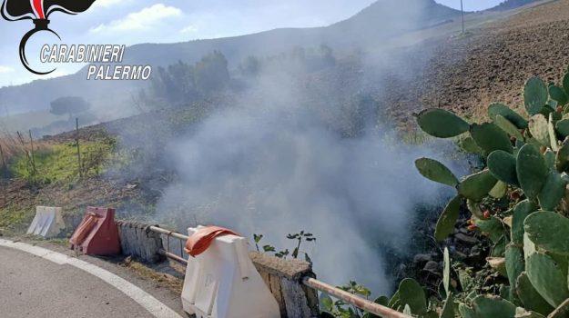 cerda, incendi, Trabia, Palermo, Cronaca
