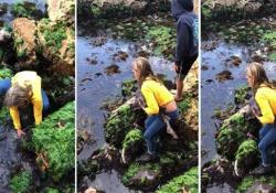 La ragazza salva uno squalo intrappolato tra le rocce per la bassa marea La undicenne ha preso in braccio uno squalo in difficoltà per liberarlo in acque più sicure - CorriereTV