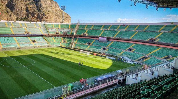 palermo calcio, Dario Mirri, Tony Di Piazza, Palermo, Calcio