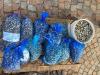 Pesca:Corazzari,al via semplificazione allevamenti molluschi