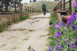 Un documentario sull'Antica Trasversale Sicula, parte una campagna di crowdfunding