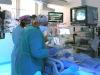 Covid: geni e ormoni cause della maggior mortalità maschile