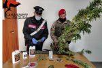 Spaccio di droga ed evasione dai domiciliari, due arresti a Vittoria e Comiso