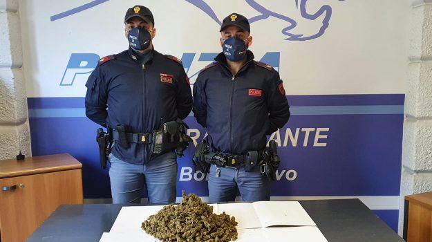arresto, marijuana, Palermo, Cronaca