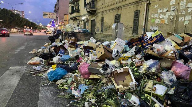 tari, Palermo, Cronaca
