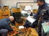 Palermo, 10 chili di cocaina nascosta tra i mandarini: la droga avrebbe fruttato un milione di euro