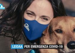 «2021, anno di speranza anche per gli animali»: la campagna della Leidaa attiva fino al 31 gennaio  La nuova fase della campagna della Lega italiana per la Difesa degli Animali e dell'Ambiente a sostegno degli animali e delle famiglie vittime della pandemia - Corriere Tv
