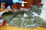"""Augusta, 3 chili di marijuana in officina: la scoperta nell'indagine sulla rapina al """"Compro oro"""""""