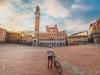 Turismo: stradedisiena.it, per valorizzazione bike e slow