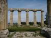 Musei: riapre larea delle Tavole Palatine di Metaponto