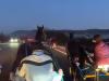 Organizzano una corsa clandestina di cavalli e pubblicano video su Facebook: 8 denunciati a Noto