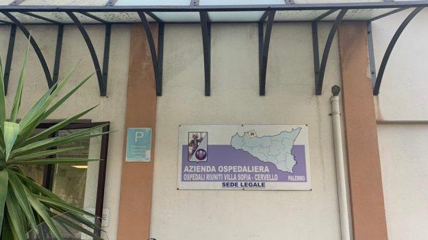 LAVORO, OSPEDALI, Palermo, Economia