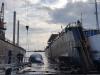 Balenottera trasportata nel porto di Napoli: è uno degli esemplari più grandi del Mediterraneo