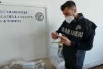 Traffico di sostanze dopanti da Torino fino a Catania: tre arresti e 12 denunce