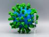 Uno studio sui macachi svela le doti del vaccino vincente (fonte: Pixabay)
