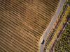 Agricoltura più green, arriva la mappa dellimpatto ambientale
