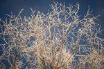 Aria gelida dalla Russia, freddo e temporali: in Sicilia neve anche sotto i mille metri