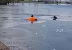 Si tuffa nel lago ghiacciato per salvare un cane Nel Regno Unito, un uomo ha salvato un cane rimasto intrappolato in mezzo ad un lago ghiacciato - CorriereTV