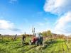 Reddito agricolo in Italia -4,9%, calo triplo della media Ue