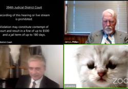 Avvocato non riesce a togliere il filtro su Zoom: nell'udienza diventa un gatto La disavventura di Rod Ponton, avvocato texano che durante un'udienza su Zoom, non è riuscito a togliere il filtro da gatto - Corriere Tv
