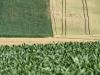 Terreni ai clan per ottenere finanziamenti pubblici, interdittiva antimafia per 4 aziende di Siracusa