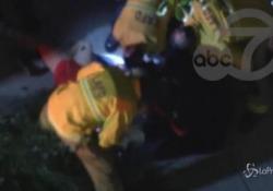 Lady Gaga è a Roma, sparano al dogsitter e le rubano i bulldog francesi Il fatto avvenuto a Los Angeles: le immagini di ABC7 LOS ANGELES - LaPresse/AP