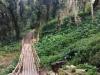 Il bosco di Erice sarà recuperato: ok ai fondi per i lavori