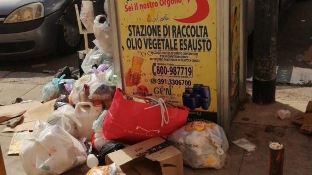 rifiuti, scuola, Palermo, Cronaca